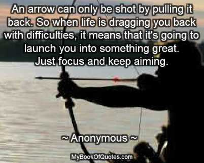 Shot Book Quotes http://mybookofquotes.com/bow-and-arrow-quotes/